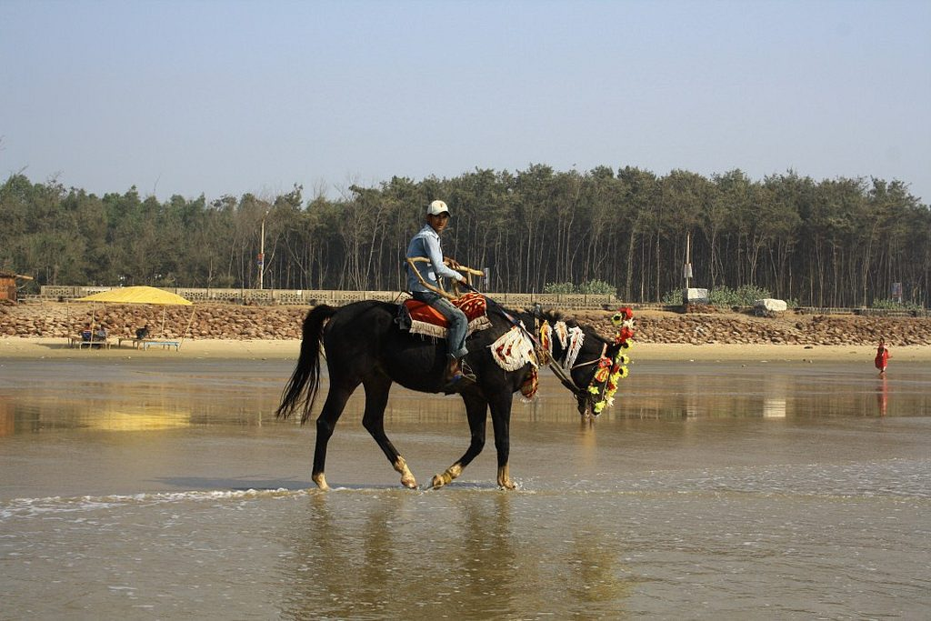 Digha Horse Ride
