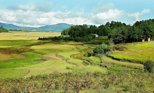 Ziro -Arunachal-Pradesh