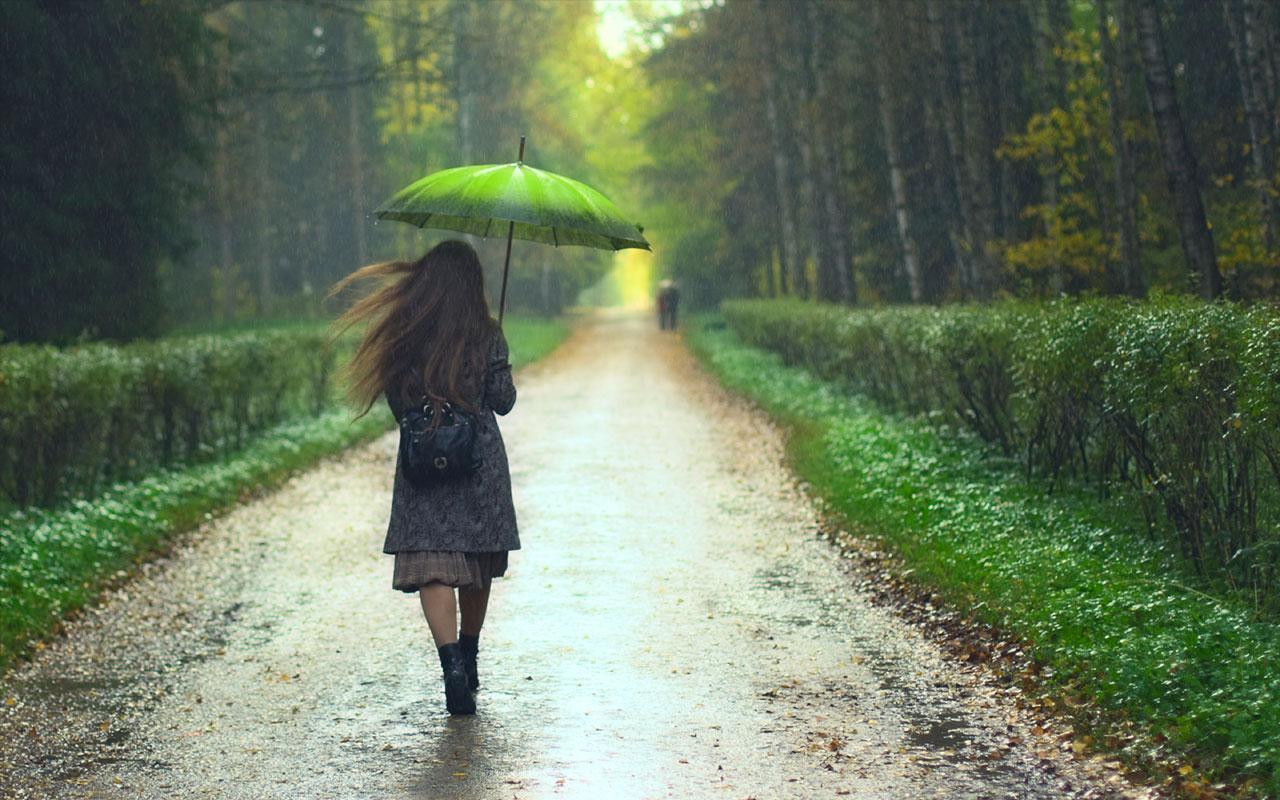 Kerala Tour In Rainy Season