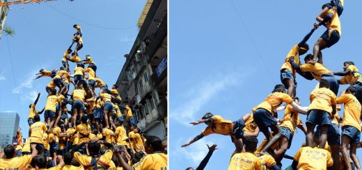 Janmashtami Celebration in Mumbai