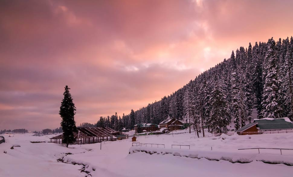 Kashmir Honeymoon