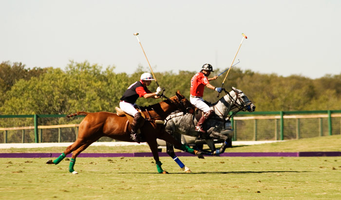Jodhpur Polo and Equestrain Institute