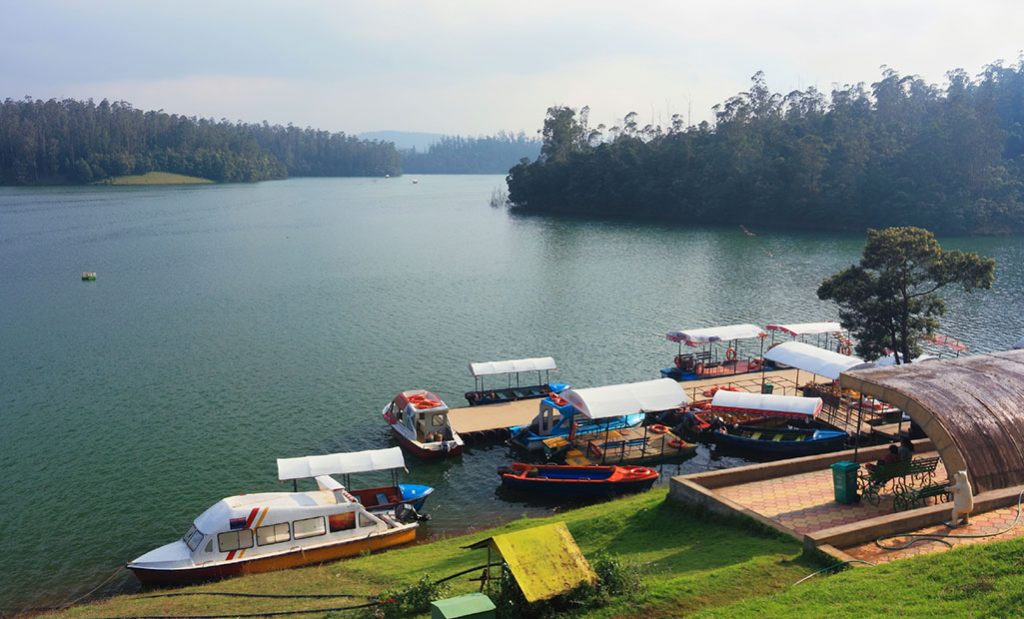 Valentine's Day in Ooty