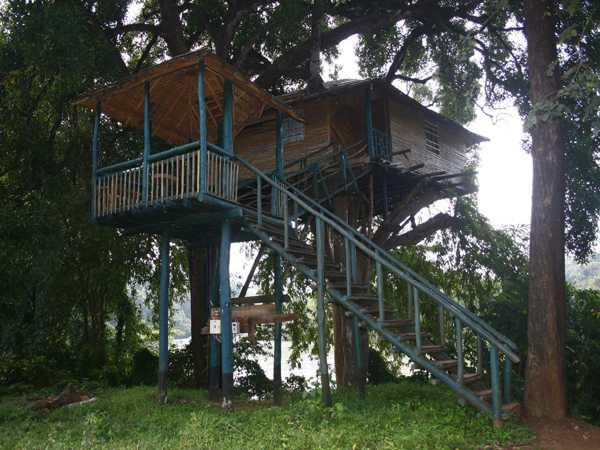 Hornbill tree house resort, Dandeli
