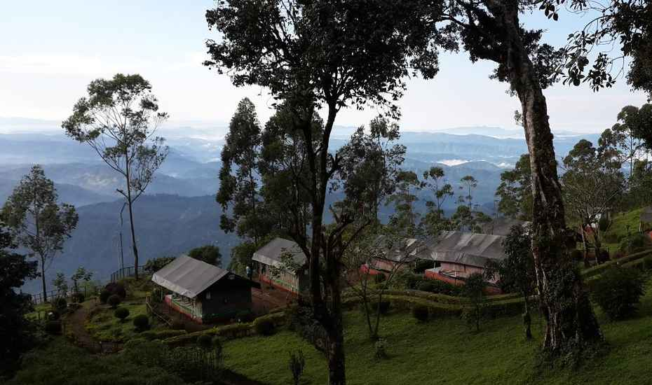 Nature Zone Resort – Munnar