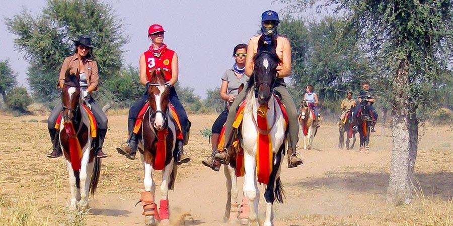 Horse Safaris, Rajasthan