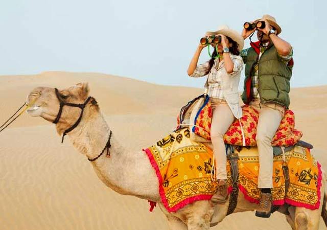 Camel Safaris, Rajasthan