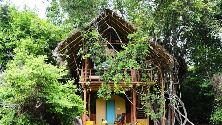 Tree House in Sri Lanka