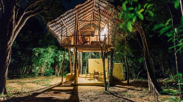Top 10 Famous Tree House in Sri Lanka - Tree Houses Resort in Sri Lanka