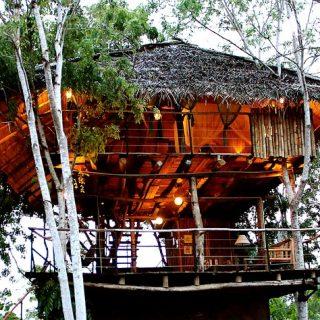 Tree House in Sri Lanka