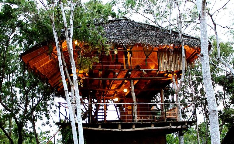 Top 10 Famous Tree House In Sri Lanka Tree Houses Resort