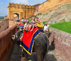Golden Triangle Tour From Mumbai