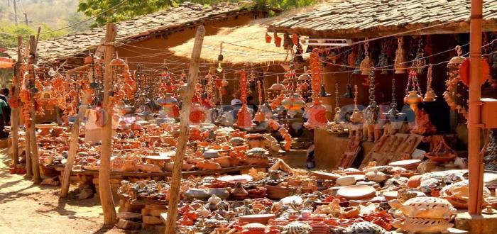 Shilpgram, Rajasthan