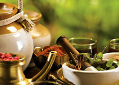Ayurveda tourism in Kerala